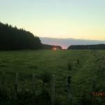 Sonnenuntergang über Schafsweider am Highwayrand beim Abendbrot