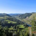 Whanganui River Road Lookout
