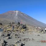 Mount Ngauruhoe = Mount Doom = Schicksalsberg - ganz nah!!!