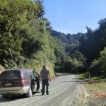 entlang des Forgotten World Highway XVI (haben Ziege gesucht)