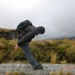 Wolfi am Mount Taranaki