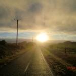 tolles Licht über Weiden IV