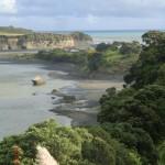 entlang der Westküste der Nordinsel (Lookout irgendwo nahe Mokau)