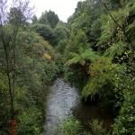 auf dem Weg zur Mangapohue Natural Bridge