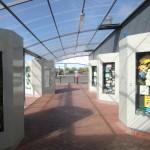 Kiwiana-Galerie Otorohanga