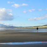 Te Puia Hot Springs Strand: er sucht
