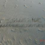 Tinis Zeitvertreib während Wolfi im Wasserloch ruht II