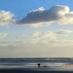 Te Puia Hot Springs Beach: er klettert wieder raus :-)