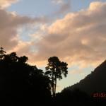Regenwälder, Sonnenuntergänge - West Coast II