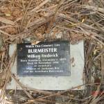 auf einem Friedhof im Regenwald an der Westküste Neuseelands!