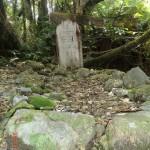 Friedhof im Westküsten-Dickicht