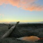 Ship Creek Strand in der Abendsonne V