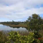 Ship Creek Dünen-Rundweg