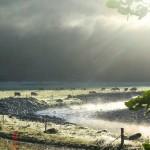 Morgenstimmung am Lake Matheson VI