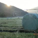 Morgenstimmung am Lake Matheson VIII