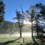 Morgenstimmung am Lake Matheson X