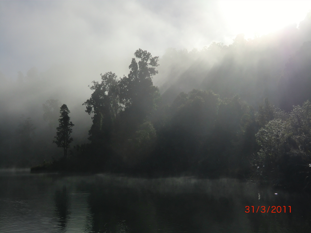 Lake Mapourika am Morgen IV - verzaubert