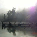 Lake Mapourika am Morgen VI
