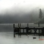 Lake Mapourika am Morgen VII