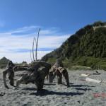 Okarito Lagoon Beach: Wer sieht den Straußenkopf?