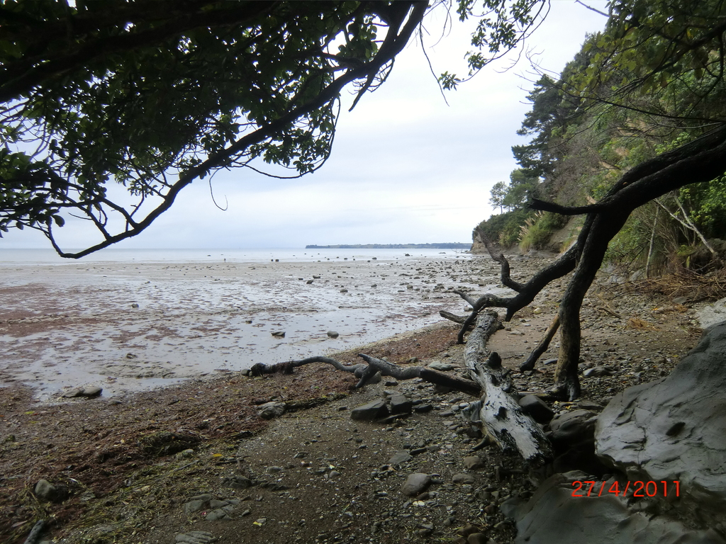 Aucklands Westküste - wild und einsam