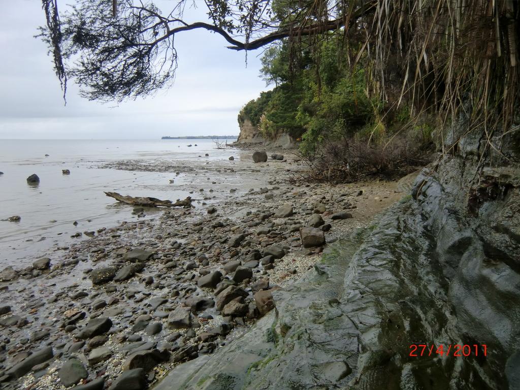 Meer, Buchten und Wildnis gar nicht weit hinter Auckland