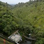 Walk zum Upper Huia Dam VII