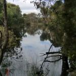 kleiner See am Wanderpfad