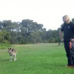 zwei Beuteltiere: Wolfi und Mary