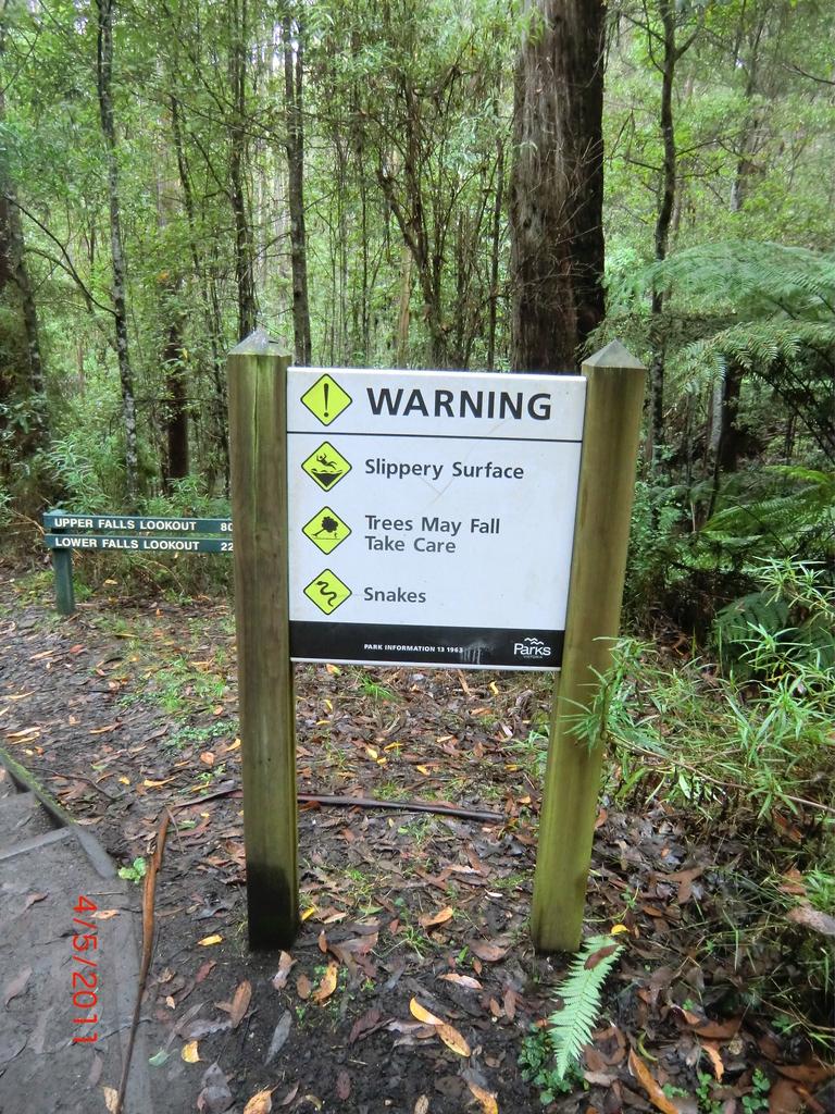 kleiner Walk zu den Erskine Falls: Achtung Schlangen!