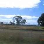 aus dem Seitenfenster in Richtung Grampians
