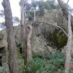 Langi Ghiran State Park: Aborigine Rock Art - Steinbatzen