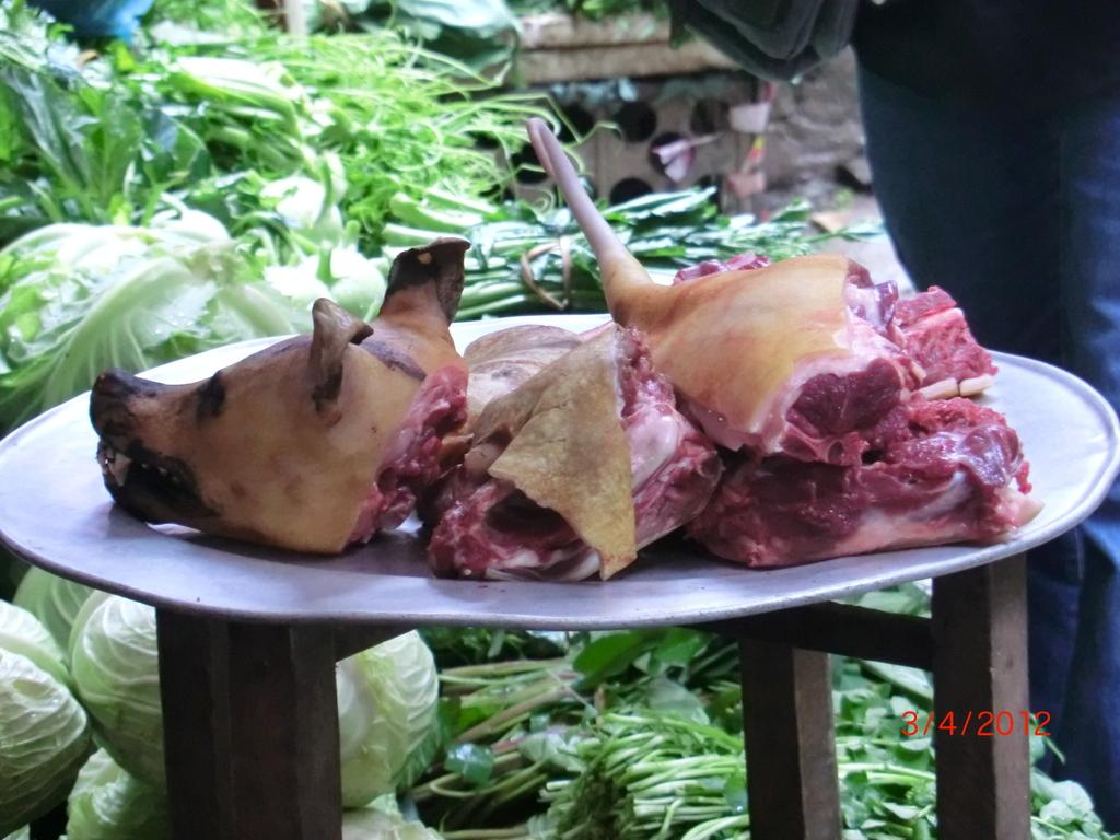 frischer Hund in Sapa